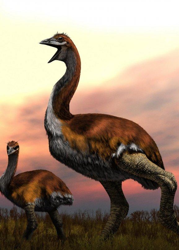 Obrovský pták