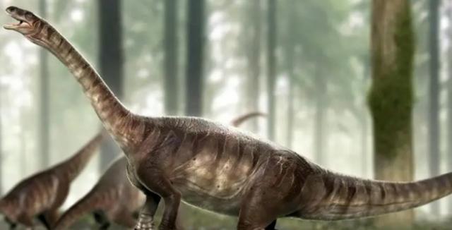 fosilních fosilních dinosaurů služby dohazování skupiny omaha